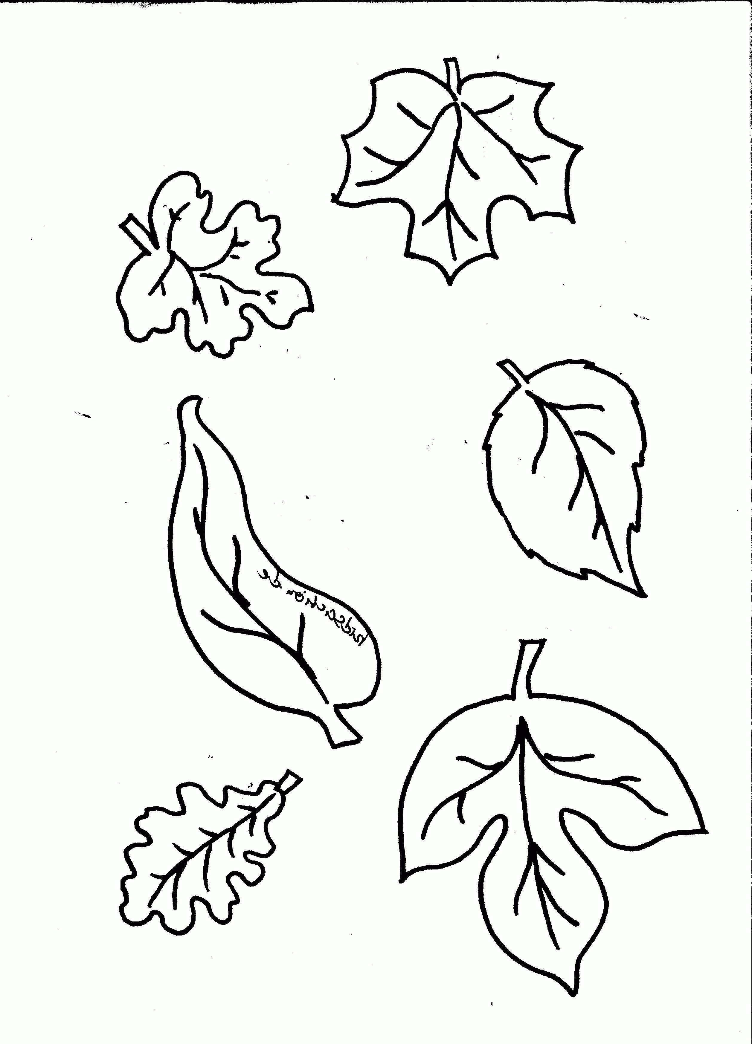 Malvorlage Blumen ornamente Frisch 43 Frisch Ausmalbilder Osterei – Große Coloring Page Sammlung Bild