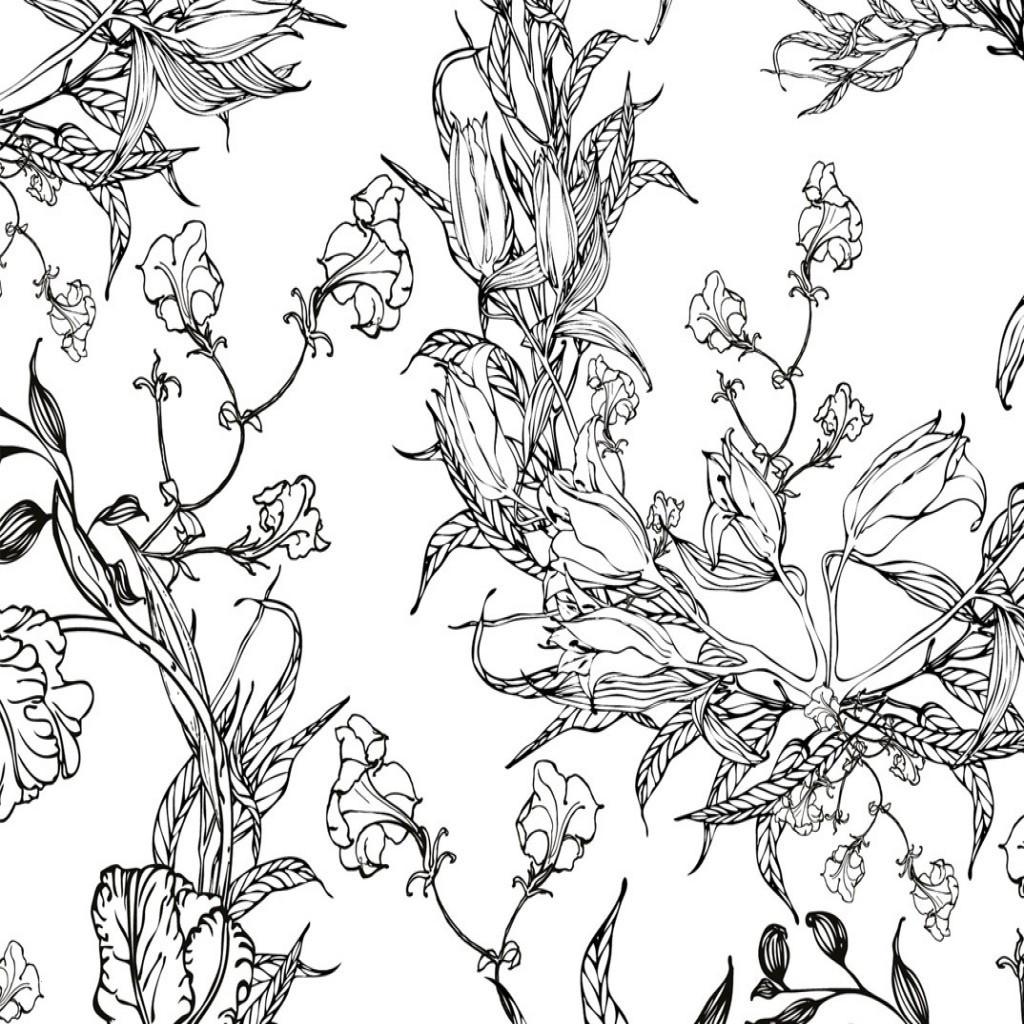 Malvorlage Blumen ornamente Frisch Malvorlagen ornamente Kostenlos Genial Bilderrahmen Ohne Rahmen Sammlung
