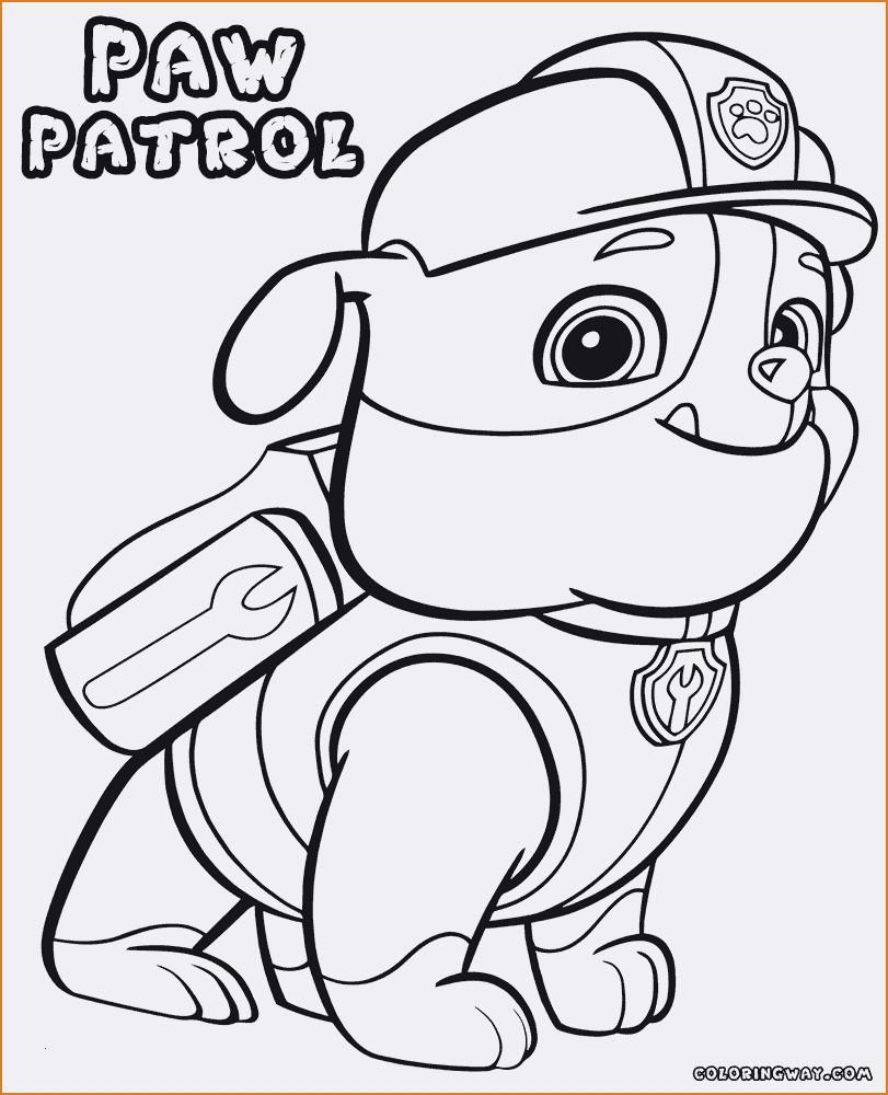 Malvorlage Paw Patrol Genial Verschiedene Bilder Färben Paw Patrol Malvorlagen Bild