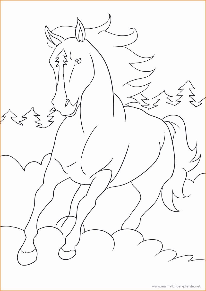 Malvorlagen Bibi Und Tina Einzigartig 33 Luxus Galerie Von Ausmalbilder Pferde Zum Ausdrucken Bild