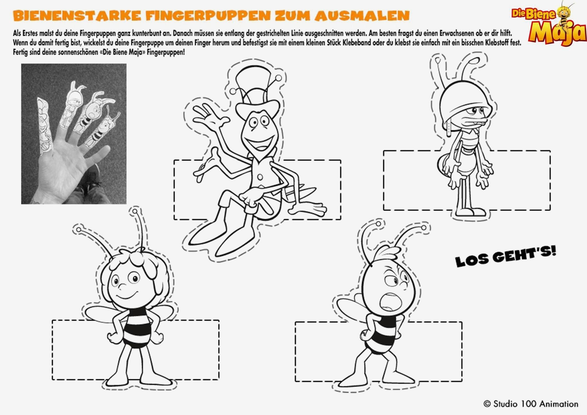 Malvorlagen Biene Maja Frisch Eine Sammlung Von Färbung Bilder Ausmalbilder Yakari Das Bild