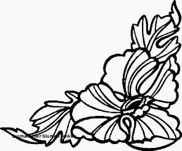 Malvorlagen Blumen Ranken Einzigartig Ausmalbilder Blumen Ranken Ausmalbilder Blumen Ausmalbilder Blumen Galerie