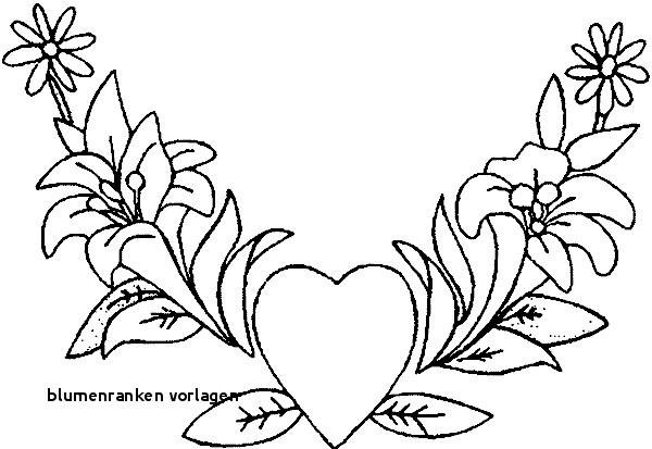 Malvorlagen Blumen Ranken Einzigartig Blumenranken Vorlagen 22 Blumen Malvorlagen Rose Google Colors Fotografieren