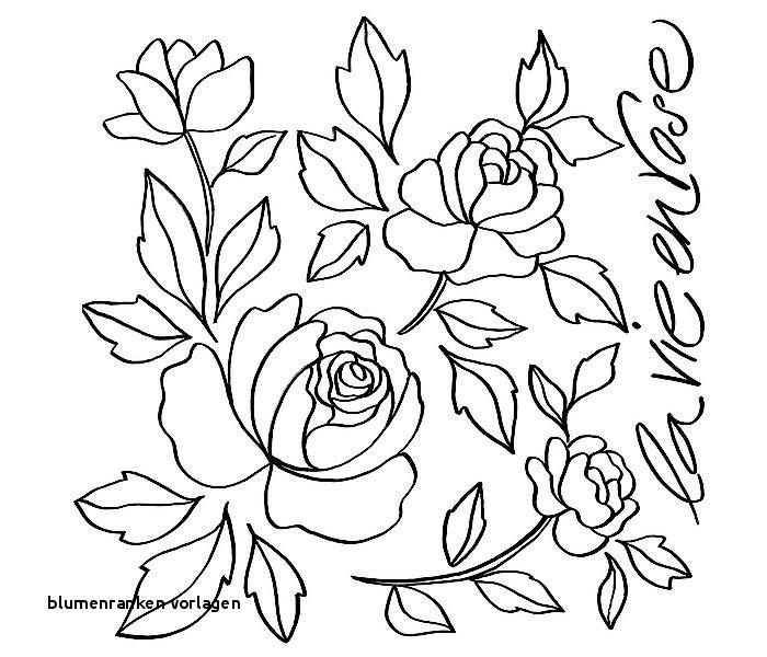 Malvorlagen Blumen Ranken Genial Blumenranken Vorlagen 22 Blumen Malvorlagen Rose Google Colors Bilder