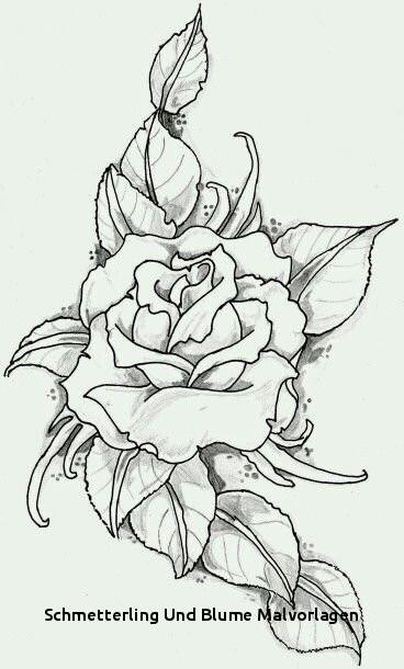 Malvorlagen Blumen Ranken Inspirierend Schmetterling Und Blume Malvorlagen Ausmalbilder Blumen Ranken 01 Bilder