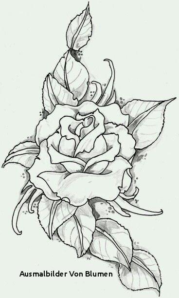 Malvorlagen Blumen Ranken Kostenlos Das Beste Von Ausmalbilder Von Blumen S S Media Cache Ak0 Pinimg originals 89 0d Galerie