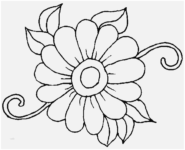 Malvorlagen Blumen Ranken Kostenlos Frisch Gambar Blumen Ranken Malvorlagen Kostenlos Zum Ausdrucken Jpeg Stock