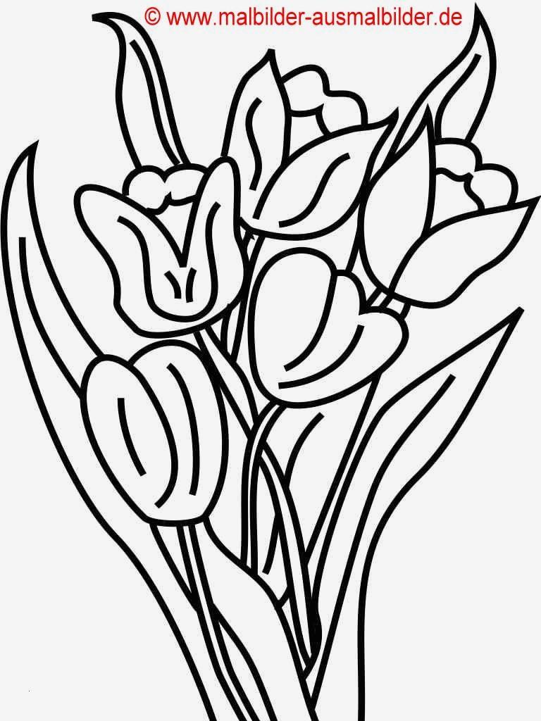 Malvorlagen Blumen Ranken Kostenlos Genial 47 Schön Blumen Malvorlagen Beste Malvorlage Das Bild