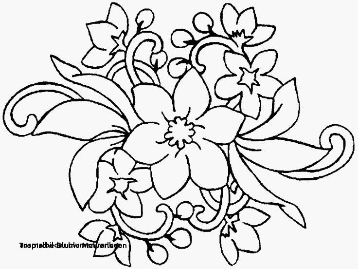 Malvorlagen Blumen Ranken Kostenlos Inspirierend Ausmalbilder Blumen Ranken Rosen Malvorlagen Zum Ausdrucken Bilder