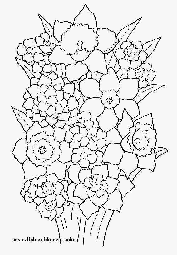 Malvorlagen Blumen Ranken Kostenlos Inspirierend Ausmalbilder Blumen Ranken Rosen Malvorlagen Zum Ausdrucken Das Bild
