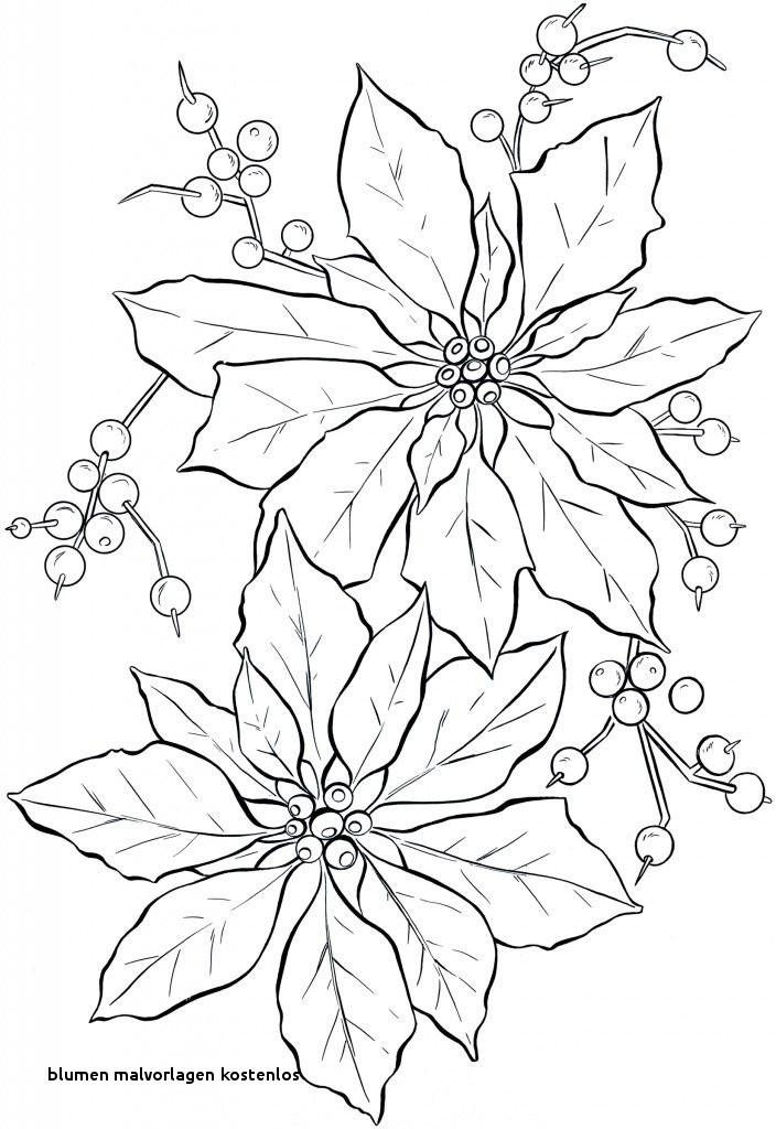 Malvorlagen Blumen Ranken Kostenlos Inspirierend Blumen Malvorlagen Kostenlos Ausmalbilder Blumen Ranken 01 Fotos