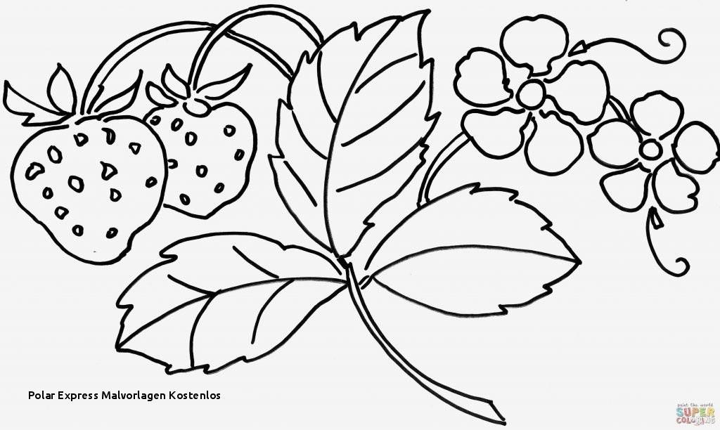 Malvorlagen Blumen Ranken Kostenlos Inspirierend Polar Express Malvorlagen Kostenlos Ausmalbilder Blumen Ranken 01 Fotografieren