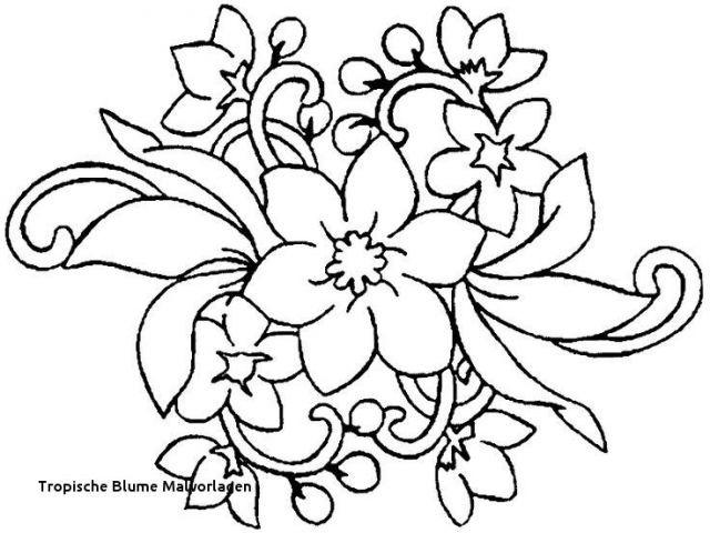 Malvorlagen Blumen Rosen Das Beste Von Ausmalbilder Blumen attachmentg Title Galerie