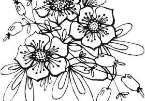 Malvorlagen Blumen Rosen Das Beste Von Ausmalbilder Blumen Malvorlage A Book Coloring Pages Best sol R Galerie
