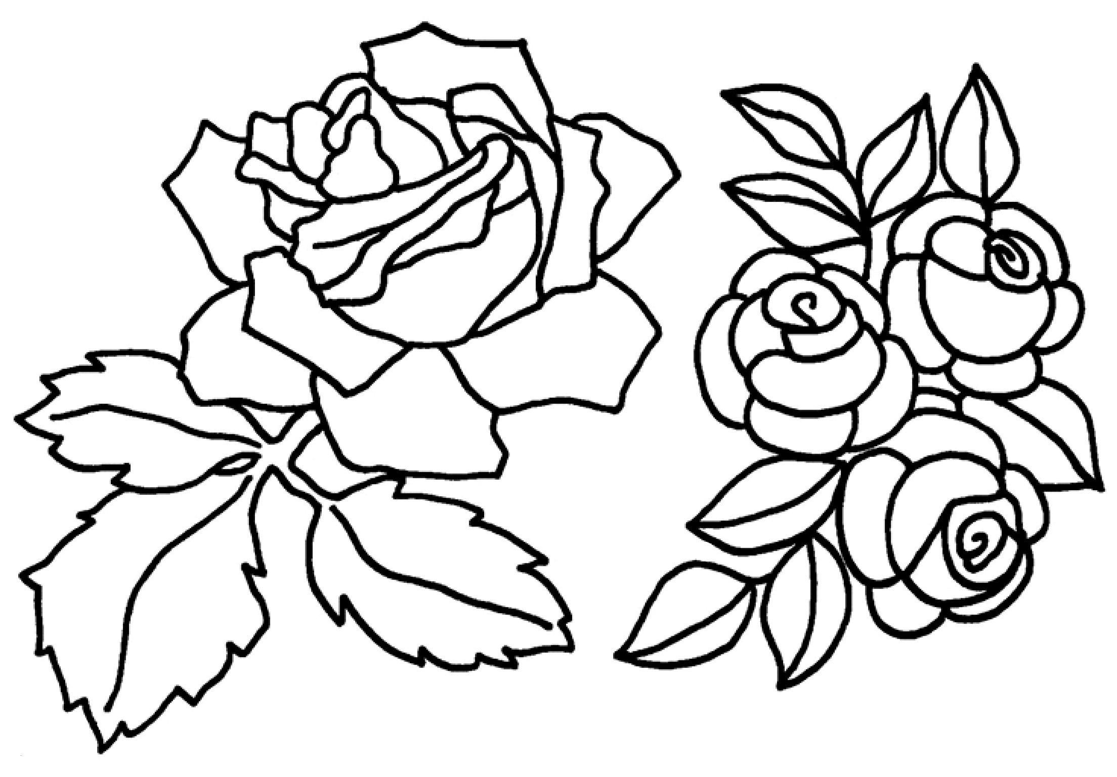 Malvorlagen Blumen Rosen Das Beste Von Ausmalbilder Rosen Awesome Das Beste Von Malvorlagen Blumen Zum Bild