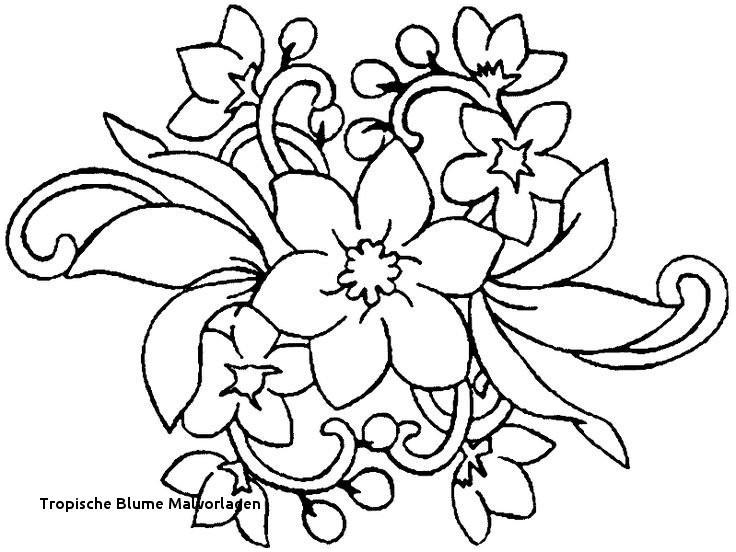 Malvorlagen Blumen Rosen Frisch Ausmalbilder Blumen attachmentg Title Bild
