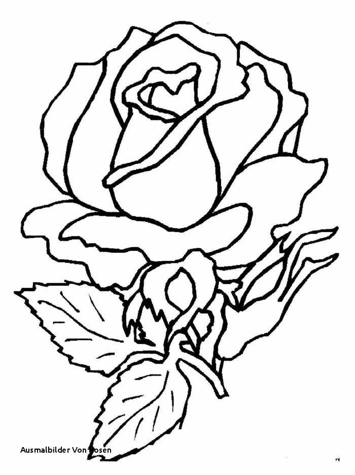 Malvorlagen Blumen Rosen Genial Ausmalbilder Von Rosen Rose Ausmalbilder Neu Traktoren Bilder Zum Bild