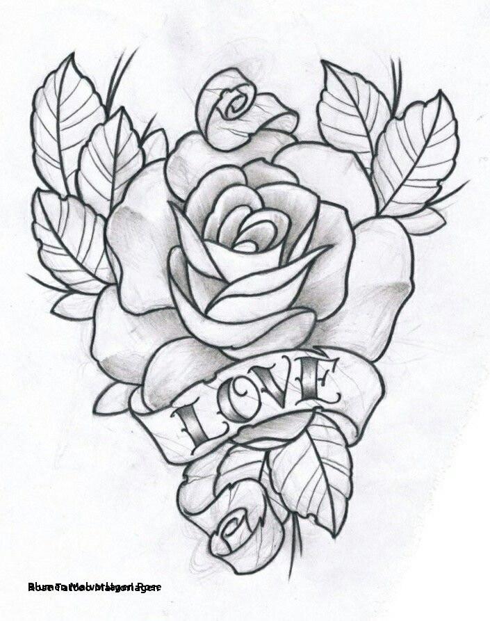 Malvorlagen Blumen Rosen Inspirierend Blumen Malvorlagen Rose Rose Tattoo Malvorlagen 17 Best Ausmalbilder Galerie