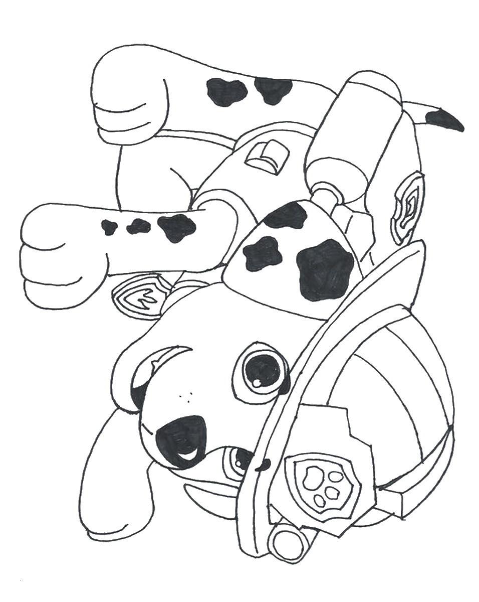 Malvorlagen Paw Patrol Frisch Inspirational Marshall Paw Patrol Coloring Page Coloring Pages Stock