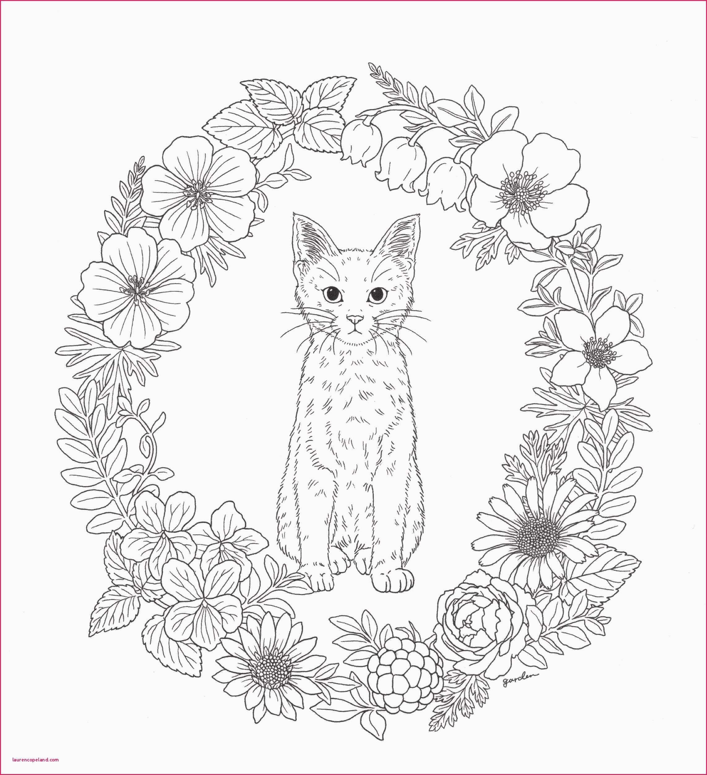 Malvorlagen Prinzessin Lillifee Das Beste Von Window Color Herbst Vorlagen 25 Druckbar Ausmalbilder Prinzessin Sammlung