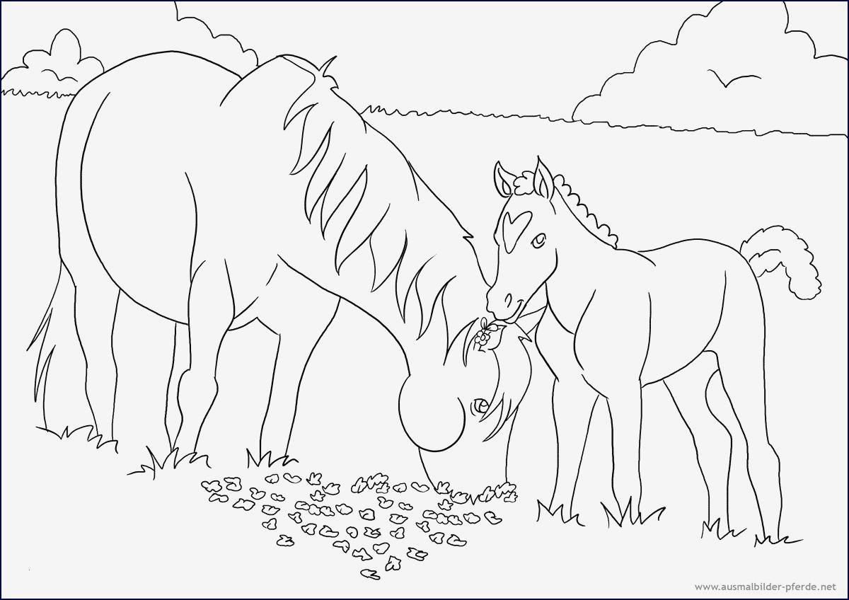 Mandala Bibi Und Tina Inspirierend 44 Schön Ausmalbilder Bibi Und Tina Pferde Malvorlagen Sammlungen Fotografieren