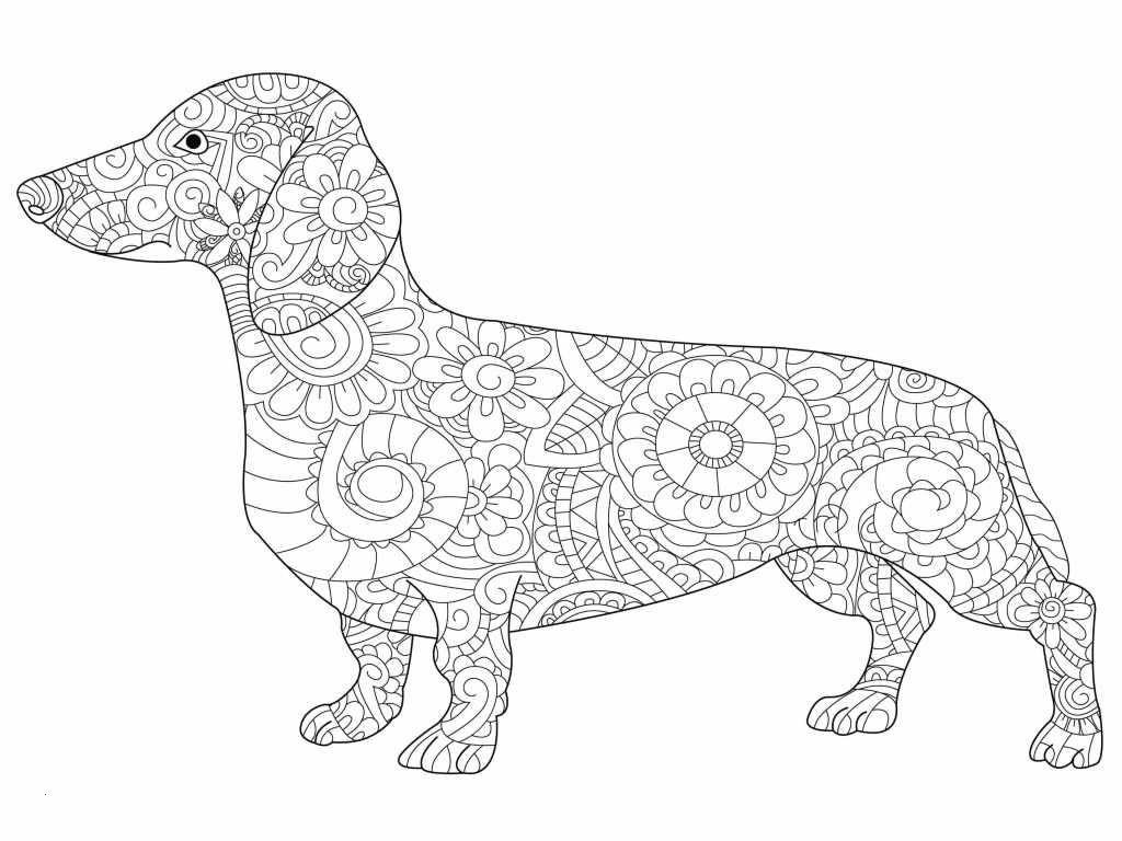 Mandala Herbst Zum Ausdrucken Frisch Kostenloses Ausmalbild Hund Dackel Die Gratis Mandala Malvorlage Das Bild