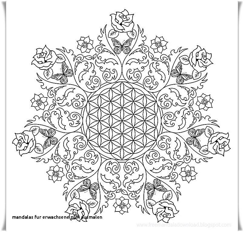 Mandala Zum Ausdrucken Erwachsene Neu 10 Best Mandalas Zum Ausdrucken tolle Blumen Mandala Vorlage Zum Das Bild
