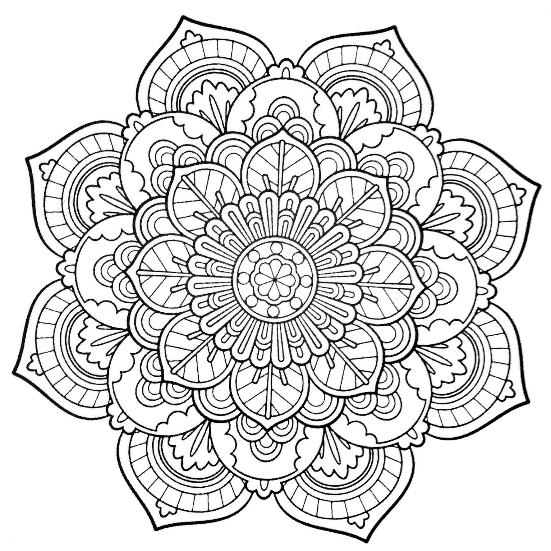 Mandala Zum Ausdrucken Erwachsene Neu Papagei Mandala Ausmalbilder Zum Ausdrucken Parrot Mandala Coloring Bild