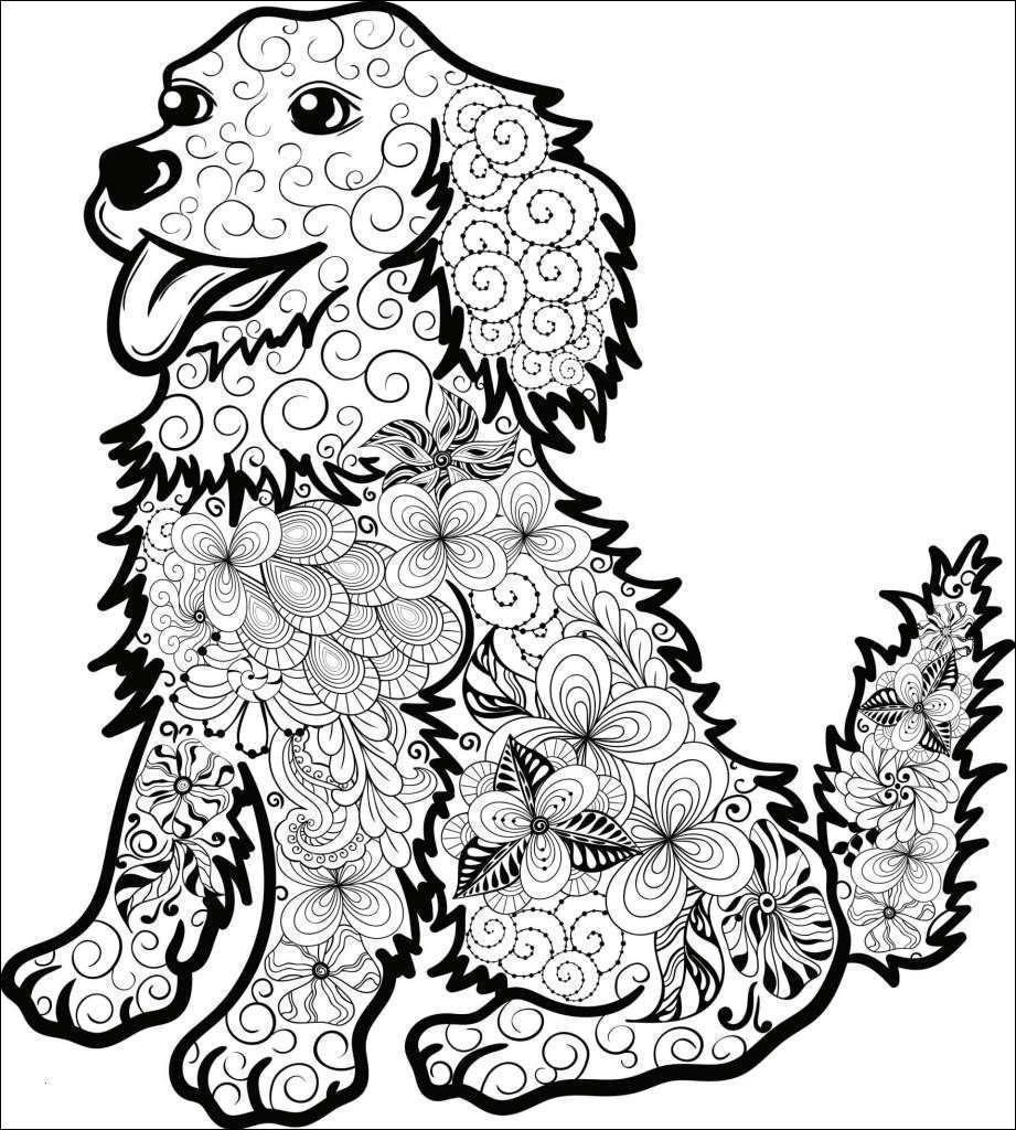 Mandala Zum Ausdrucken Erwachsene Neu Winter Mandalas Zum Ausdrucken Bildnis Malvorlagen Igel Best Igel Galerie