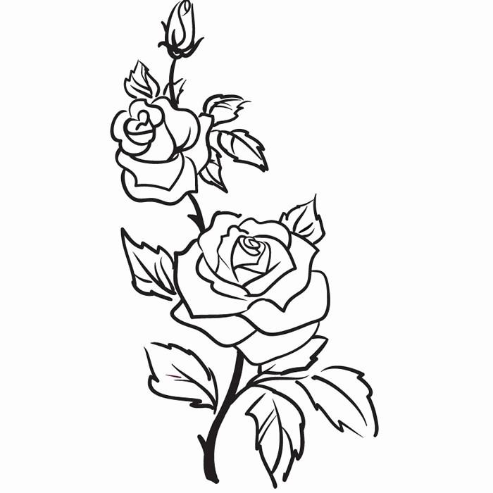 Mandala Zum Ausdrucken Rosen Neu 28 Elegant Blumen Zum Ausdrucken – Malvorlagen Ideen Sammlung