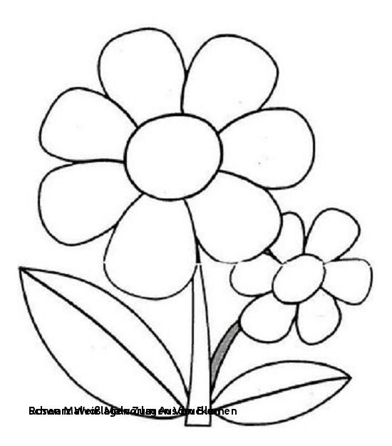 Mandala Zum Ausdrucken Rosen Neu Ausmalbilder Blumen Rosen Malvorlagen Zum Ausdrucken Ausmalbilder Das Bild