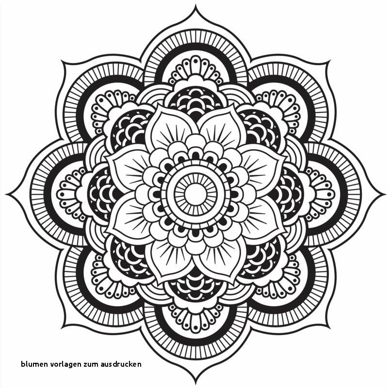 Mandala Zum Ausdrucken Rosen Neu Blumen Vorlagen Zum Ausdrucken 23 Rosen Malvorlagen Zum Ausdrucken Sammlung