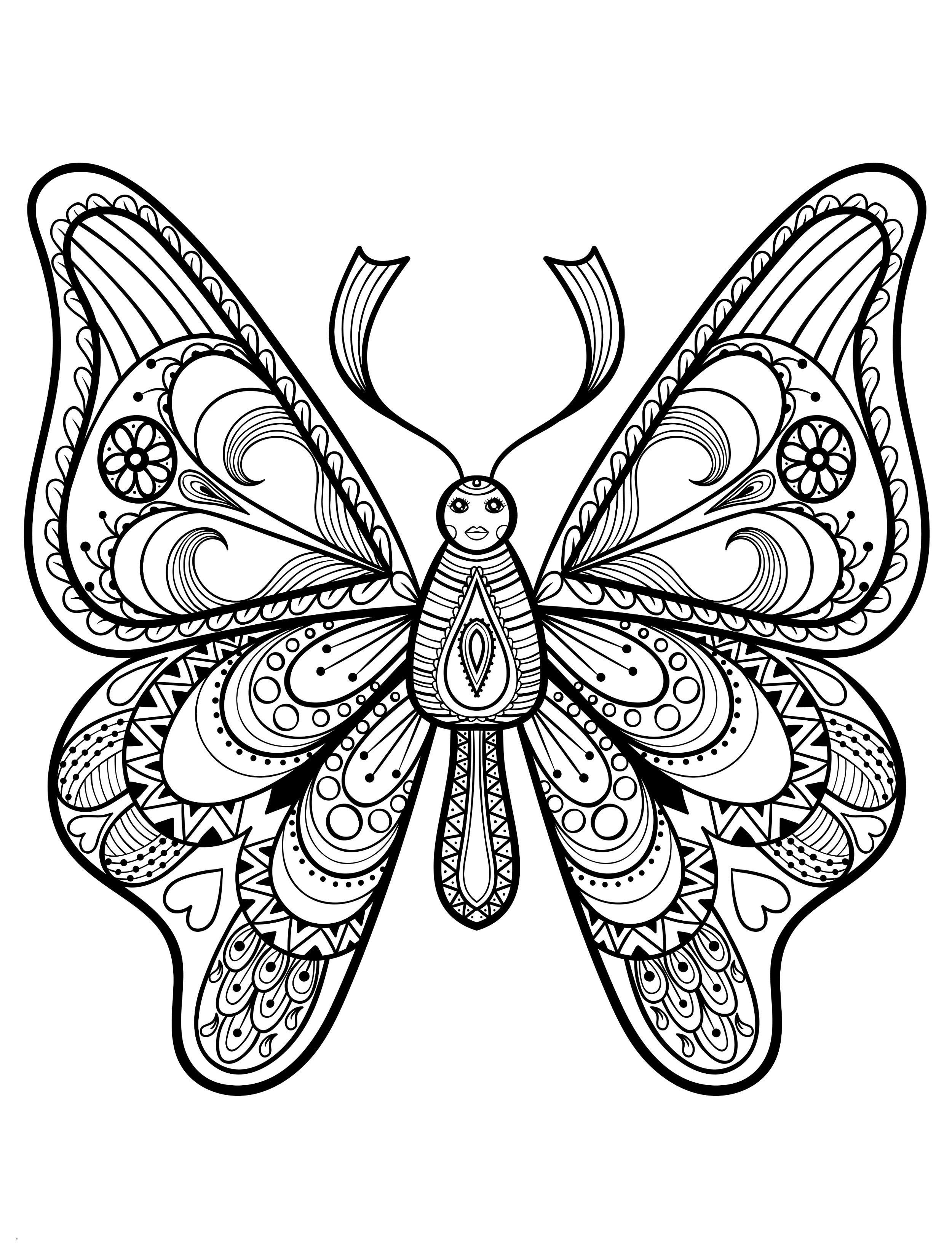 Mandalas Zum Ausmalen Schmetterling Das Beste Von 48 Idee Malvorlagen Schmetterlinge Treehouse Nyc Sammlung