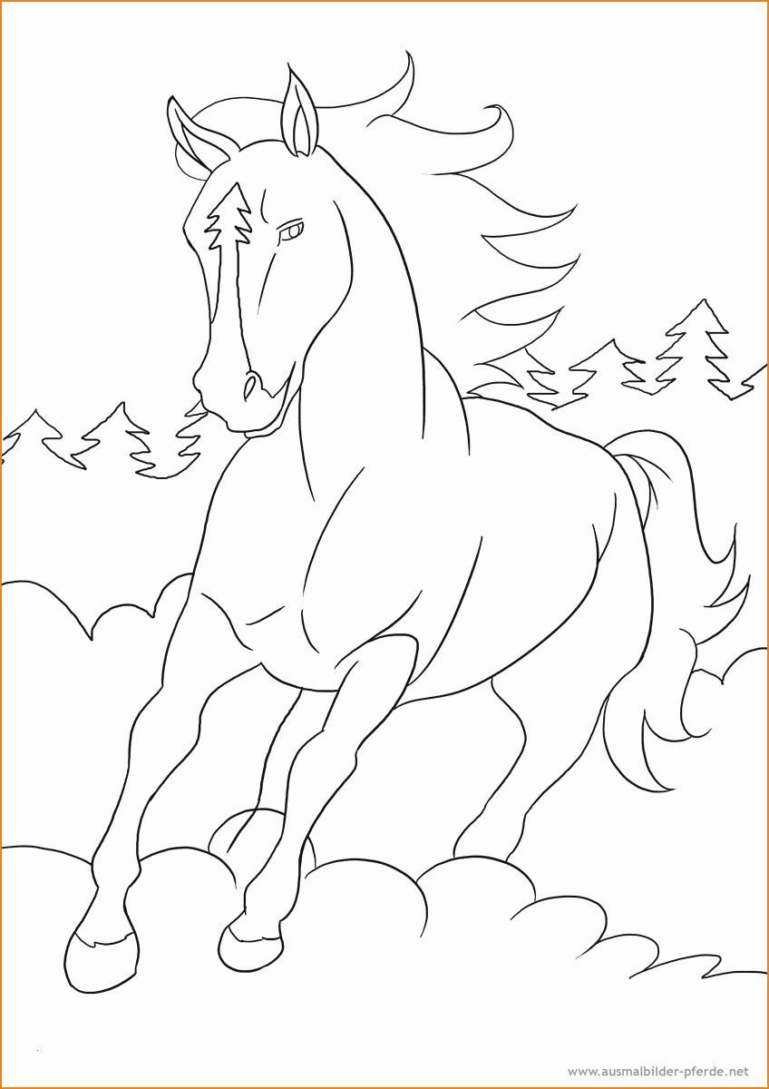 Maulwurf Bilder Zum Drucken Genial Pferde Ausmalbilder Drucken Genial 37 Pferde Ausmalbilder Ausdrucken Bild