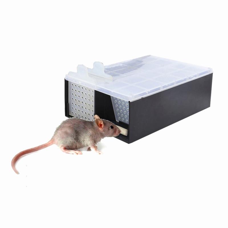 Micky Maus Malvorlage Das Beste Von Maus Im Garten Inspirierend Ausmalbilder Die Maus Luxus Malvorlagen Galerie