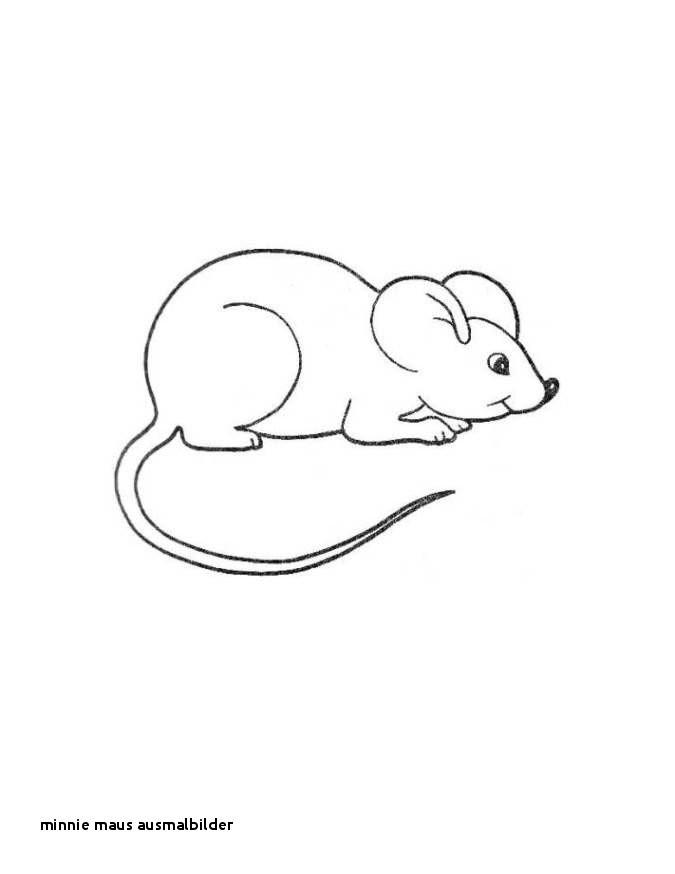 Minni Maus Zum Ausmalen Neu Minnie Maus Ausmalbilder Malvorlage Maus Kostenlos Az Ausmalbilder Bild