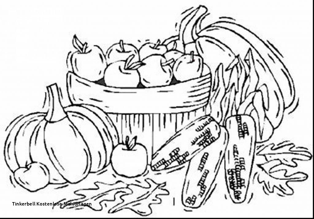 Minnie Maus Malvorlage Das Beste Von Tinkerbell Kostenlose Malvorlagen Inspirational Minnie Mouse Drawing Fotos