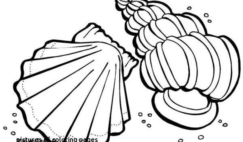 Miraculous Ladybug Ausmalbilder Einzigartig Malvorlagen Malvorlage A Book Coloring Pages Best sol R Coloring Stock
