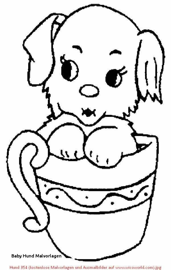 Mops Zum Ausmalen Frisch Baby Hund Malvorlagen 35 Mops Ausmalbilder Scoredatscore Ecoloring Bilder
