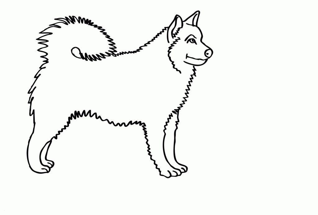 Mops Zum Ausmalen Genial Ausmalbilder Hund Neu 35 Mops Ausmalbilder Scoredatscore Stock