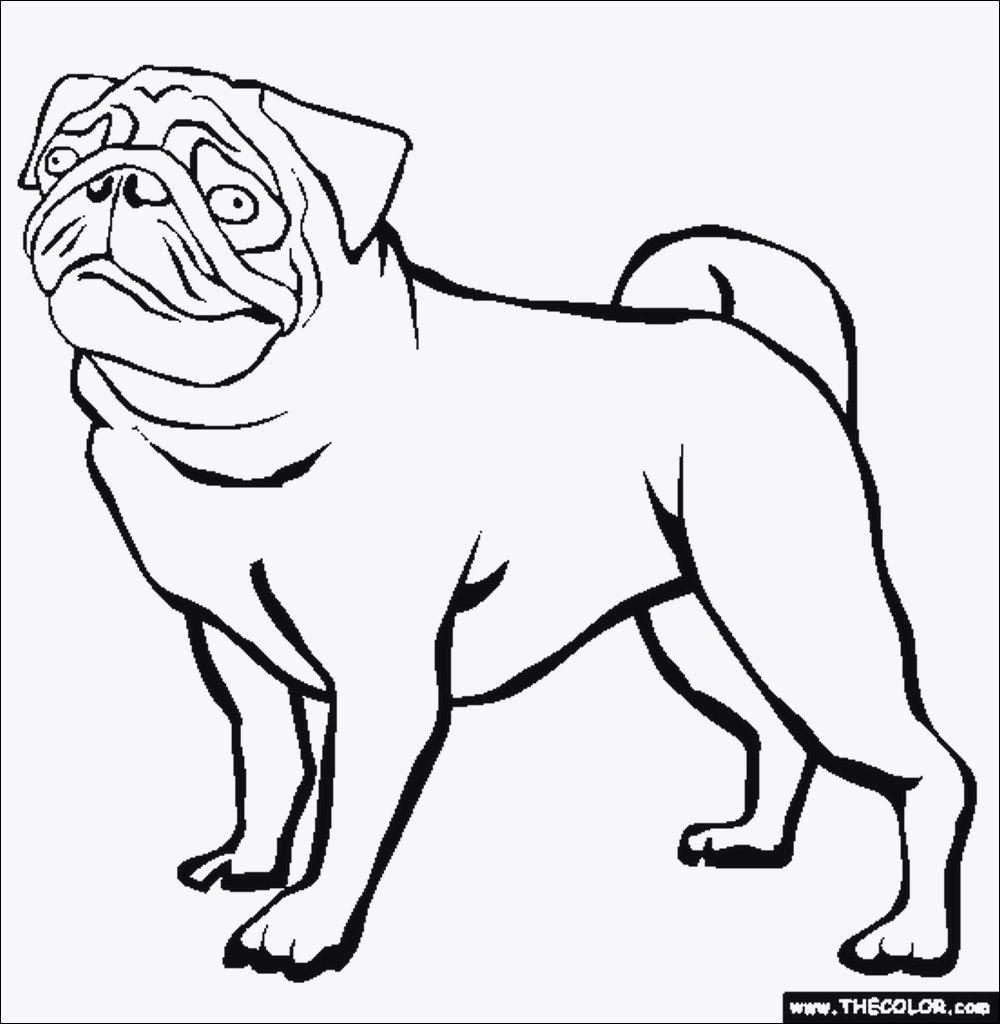 Mops Zum Ausmalen Genial Ausmalbilder Hunde Zum Ausdrucken Kostenlos Fotografieren