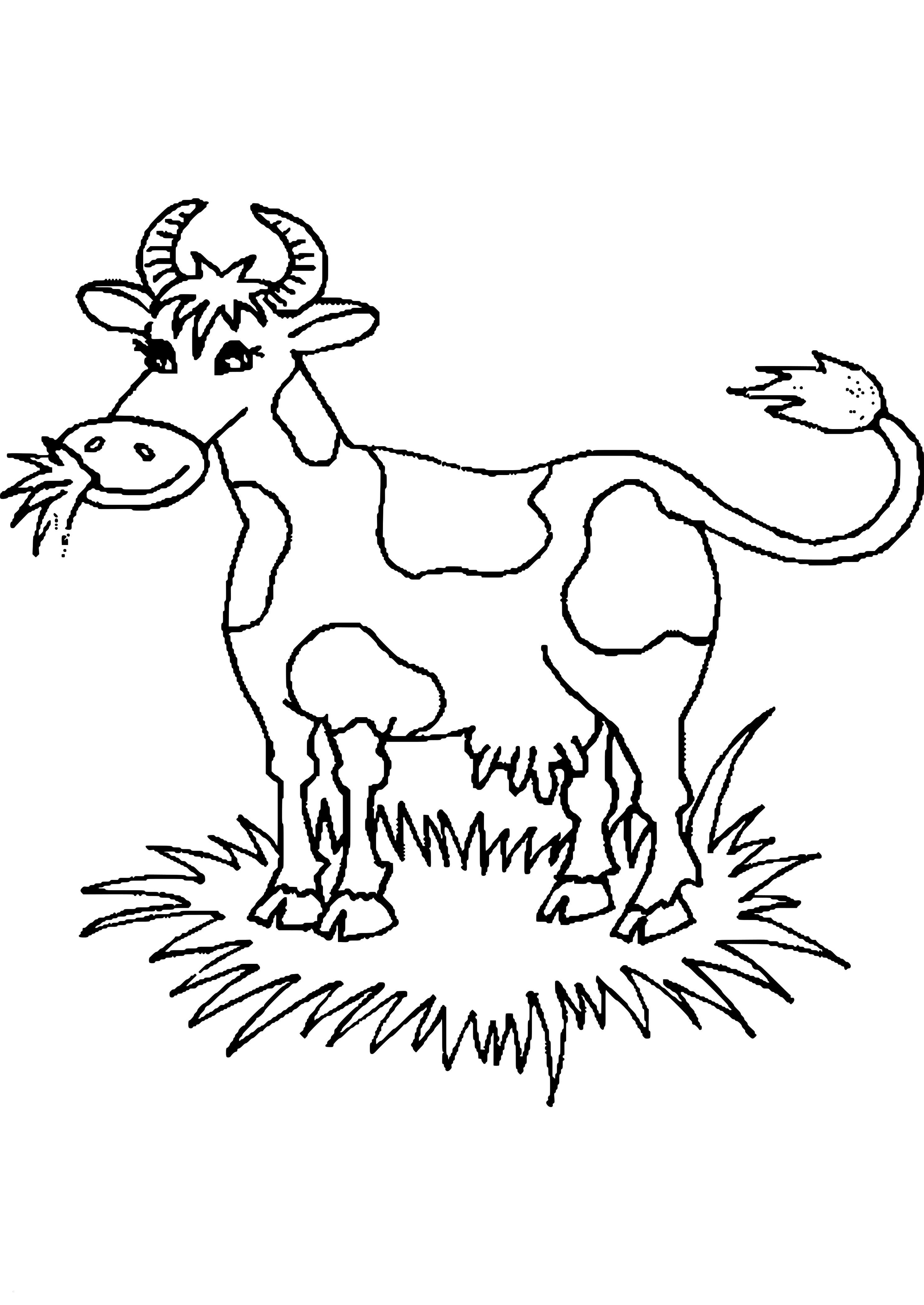 Nashorn Zum Ausmalen Neu Malvorlagen Kuh Schön Malvorlagen Tiere Kuh Zum Drucken Neu Galerie