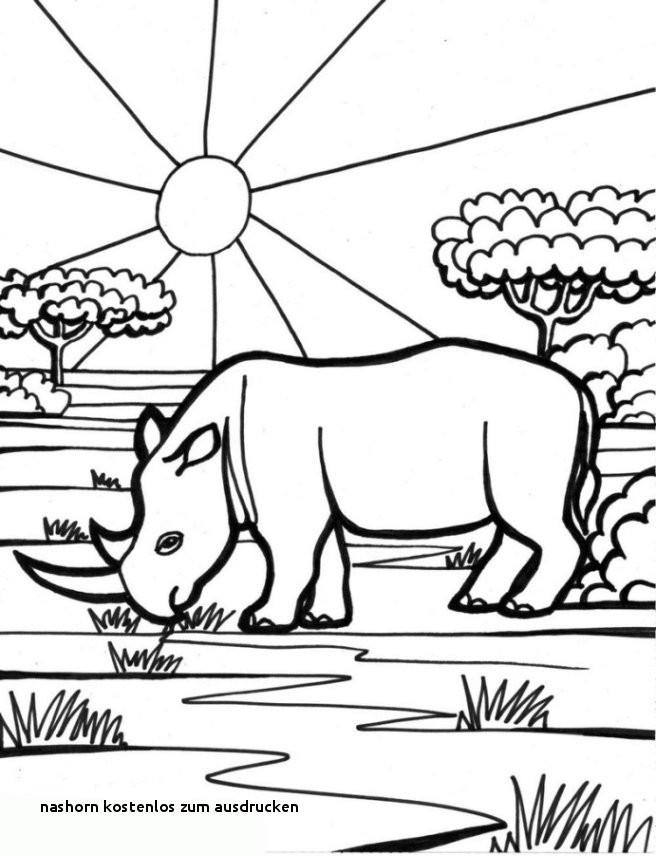 Nashorn Zum Ausmalen Neu Nashorn Kostenlos Zum Ausdrucken Ausmalbilder Malvorlagen – Nashorn Sammlung