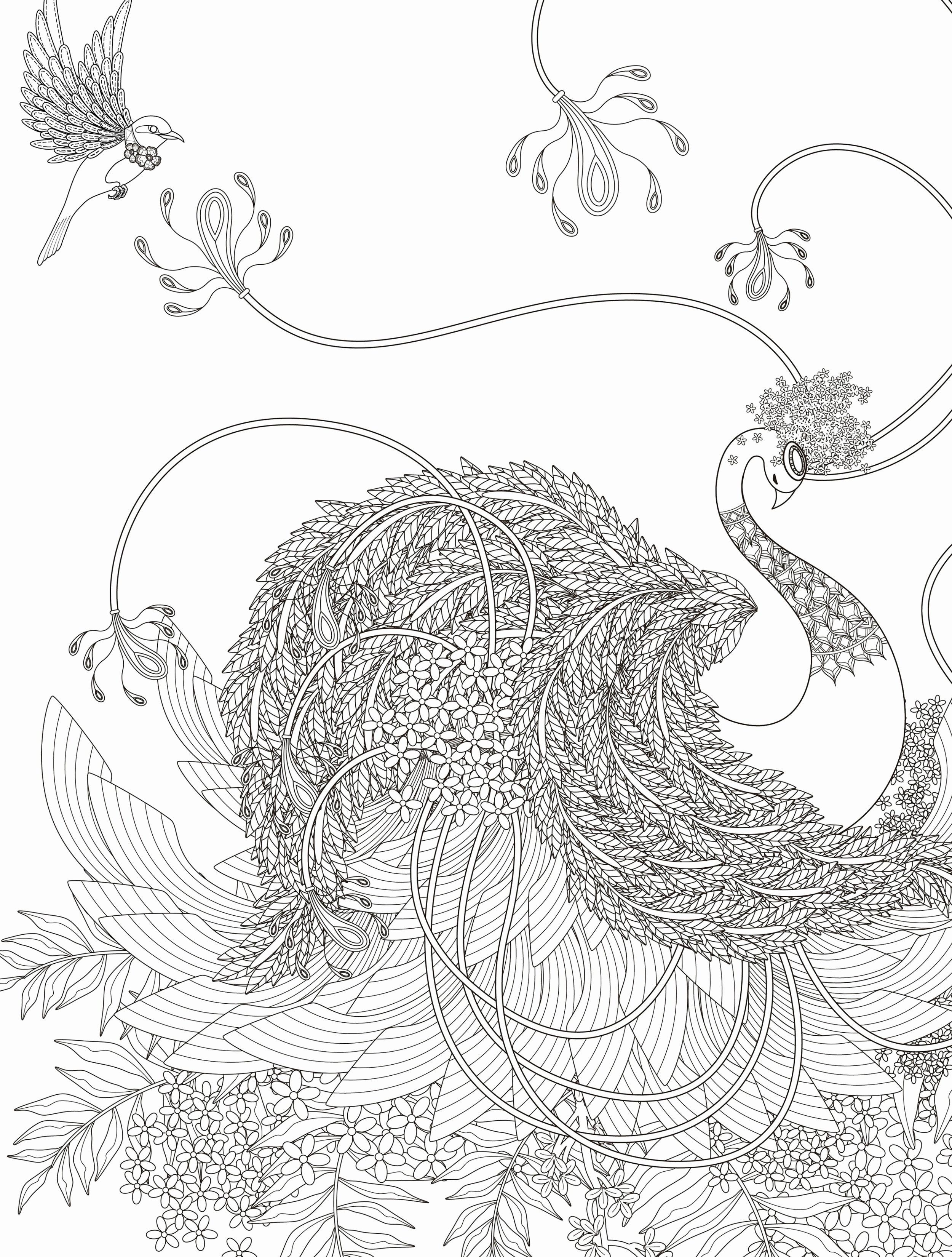Ninja Turtle Ausmalbilder Inspirierend Ausmalbilder Malen Nach Zahlen Zum Drucken Frisch Malen Nach Zahlen Bild
