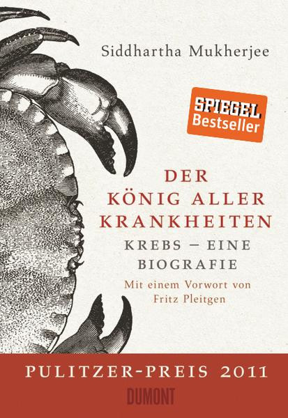 Olaf Eiskönigin Wallpaper Das Beste Von Aktuelle Angebote Bild