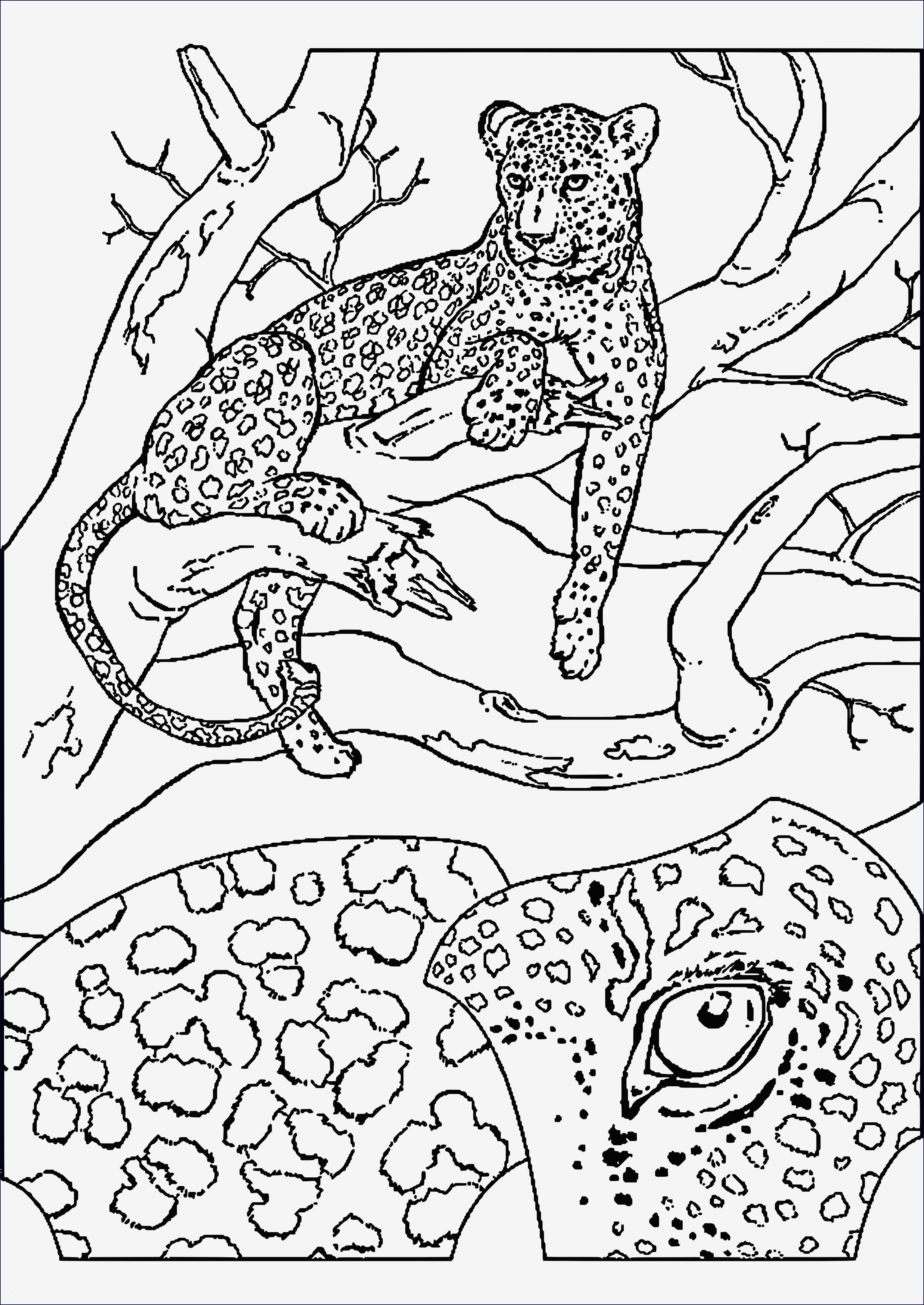 Ostereier Ausmalbilder Zum Ausdrucken Einzigartig Ausmalbilder Osterei Inspirierend Malvorlagen Igel Einzigartig Igel Bilder