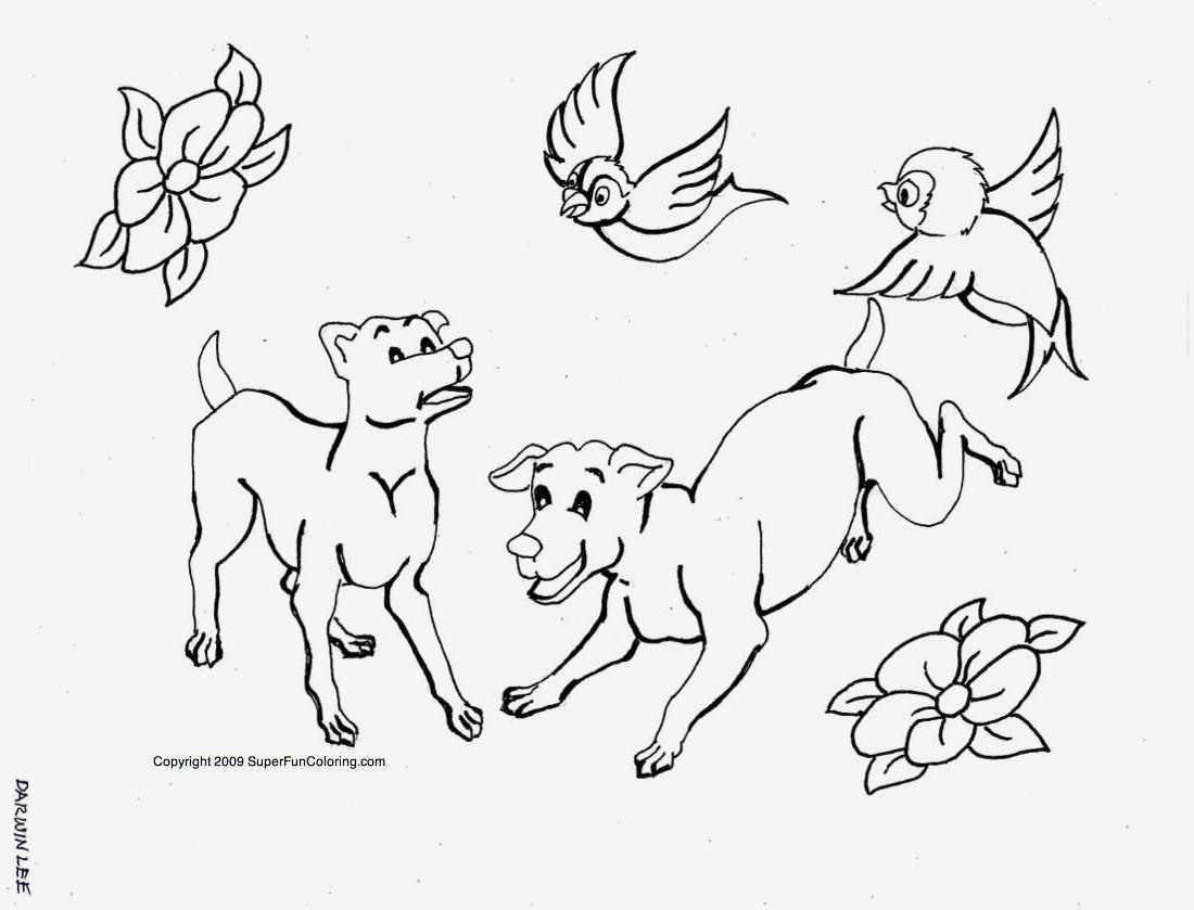 Papagei Zum Ausmalen Das Beste Von Beispielbilder Färben Ausmalbilder Hund Und Hase Sammlung