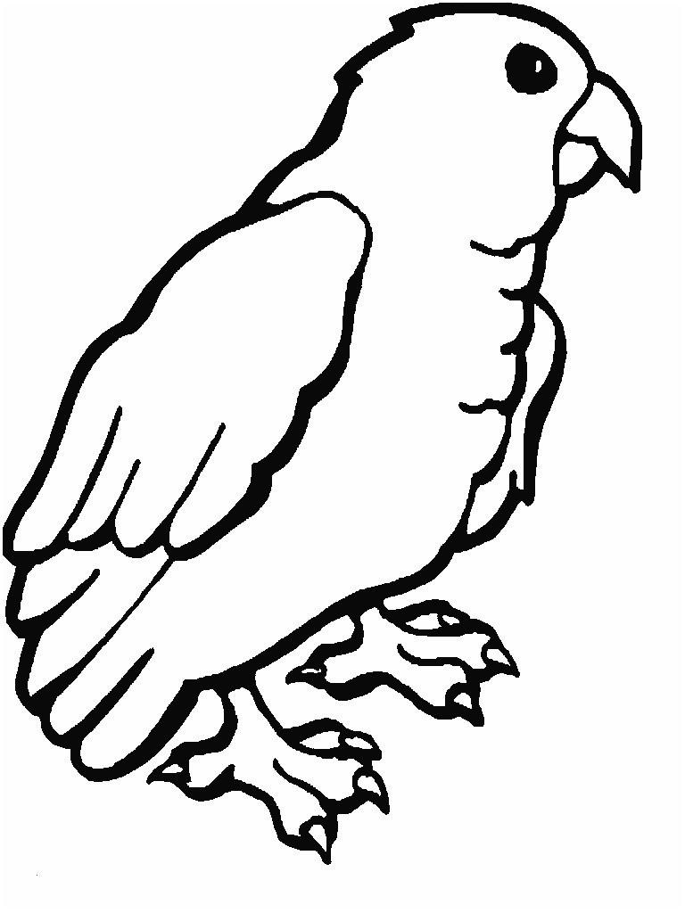 Papagei Zum Ausmalen Frisch 42 Neu Papagei Ausmalen – Große Coloring Page Sammlung Das Bild