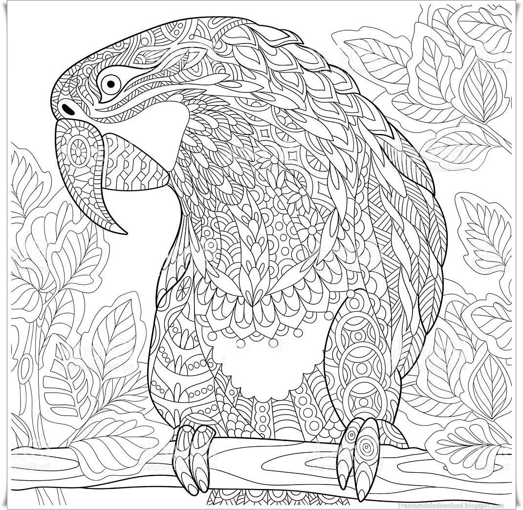 Papagei Zum Ausmalen Genial 25 Erstaunlich Ausmalbilder Tiere Erwachsene Neu Ausmalbilder Sammlung