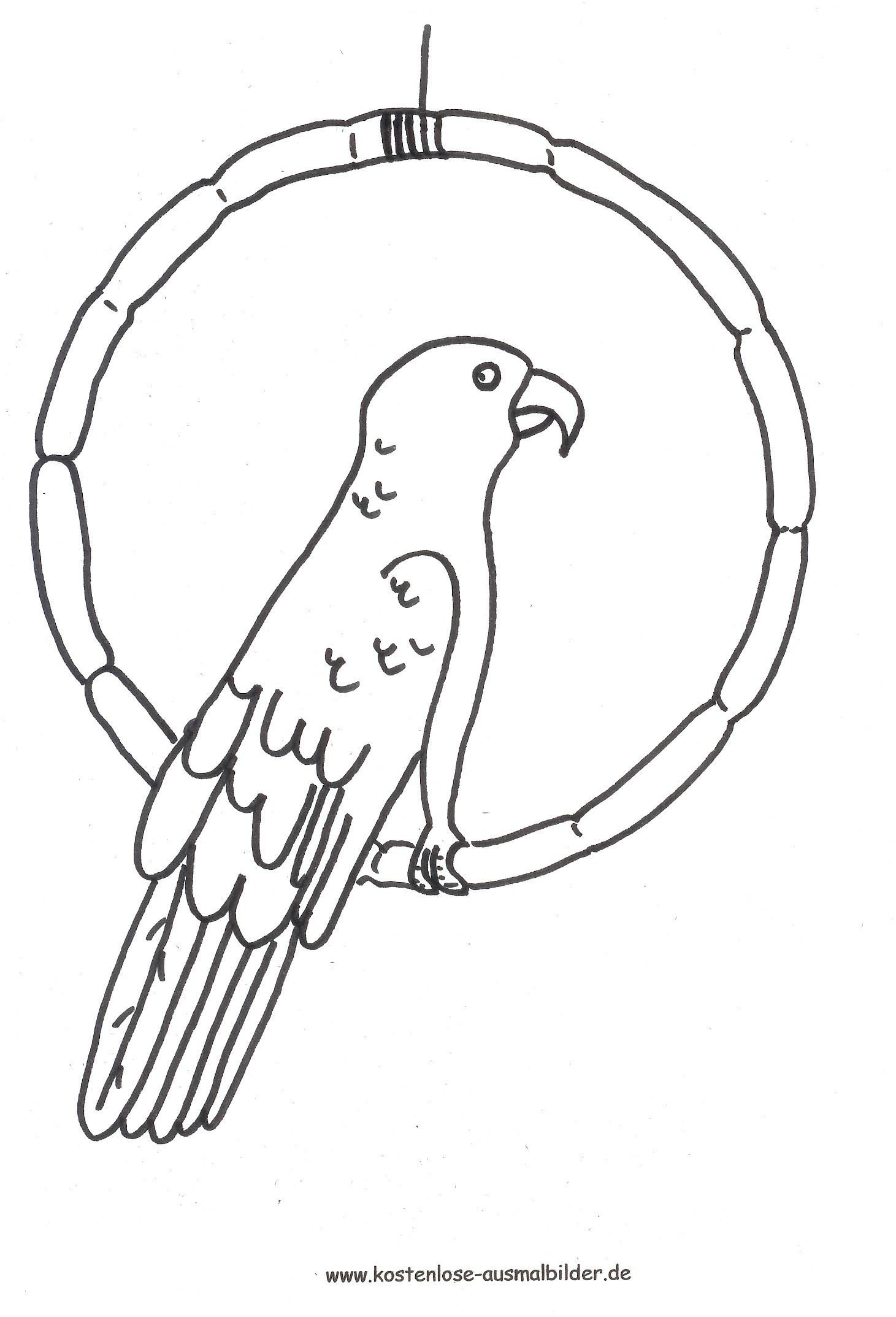 Papagei Zum Ausmalen Neu 42 Neu Papagei Ausmalen – Große Coloring Page Sammlung Stock